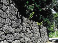 Coral Fences Remain