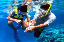 Snorkeling Zamami island