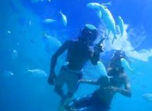Snorkeling Tokashiki Island